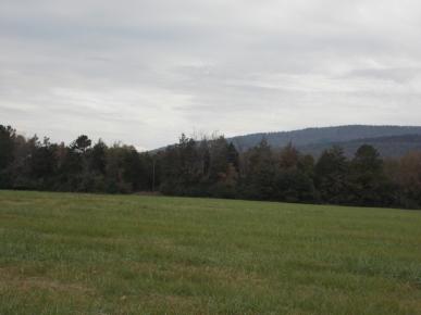 1850 Cherokee Land Freedom Polk County Arkansas Photo Taken 2014