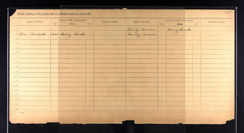Mary Weaver Crittenden Dawes Census Card 2