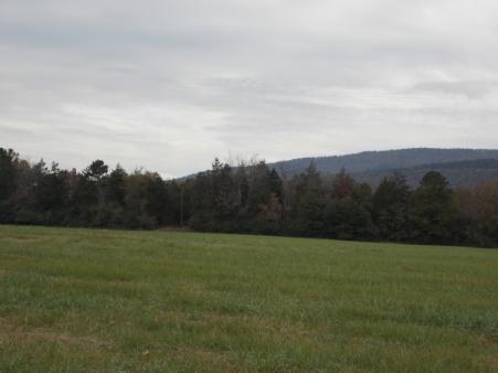 Cherokee Homestead Land in Arkansas